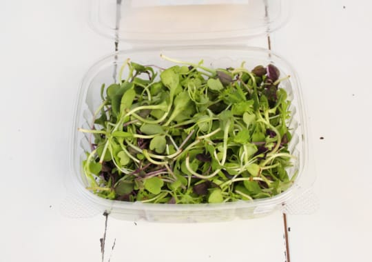 Sprouts, Savory Sun Blend
