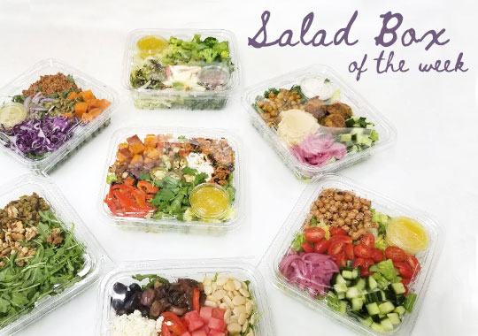 Salad Box of the Week (Sarah Britton