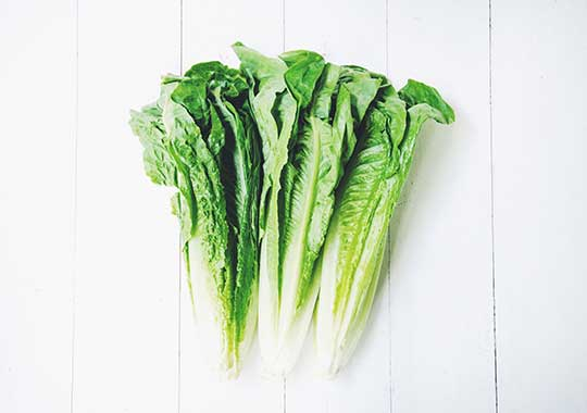 Lettuce (Romaine Hearts, 3 pack)