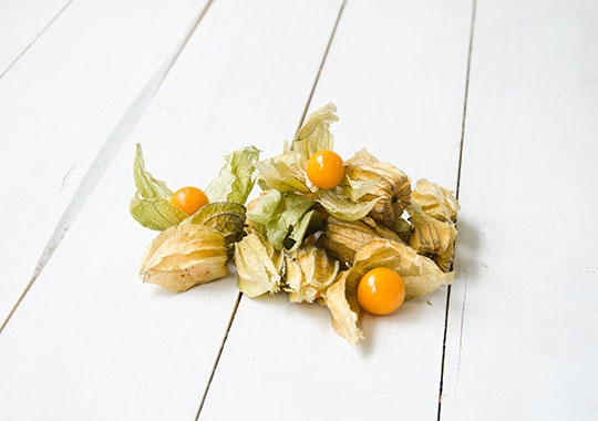 Ground Cherry (1 pint)