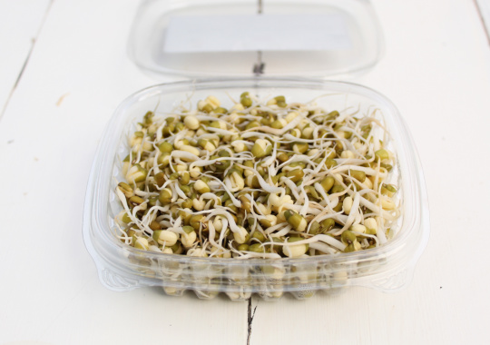 Sprouts (Mung Bean, 125g)