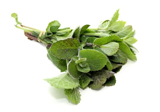 Herb (Mint, Bunched, Sml)