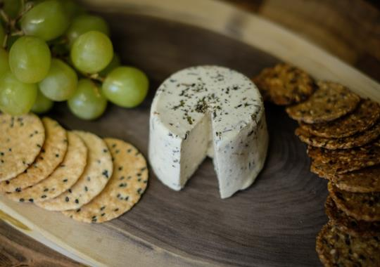 Herb and Garlic Tree Nut Cheeze