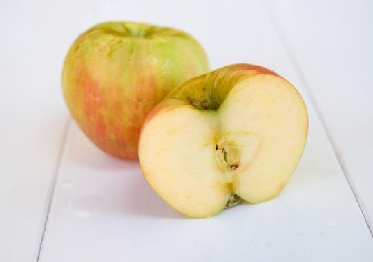 Apple (Honeycrisp, sml) - not certified, grown organically