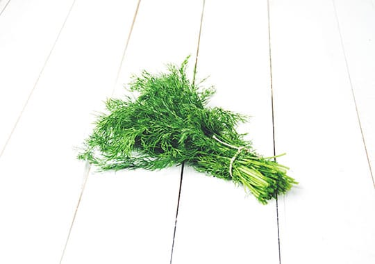 Herb (Dill, Bunch)