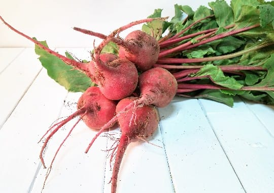 Beets (Chioggia, Bunch)